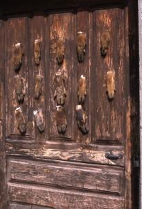 Puerta de una casa de Sobrarbe con patas de jabalí.